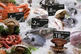 Evolis Card Market Fish