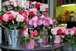 Evolis Card Market Flowers