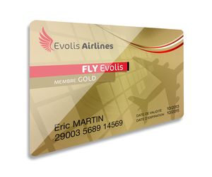 Zenius-Card-Exemple_Airplane-800x1000